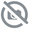 Ice roll's Avocat Cheese Concombre